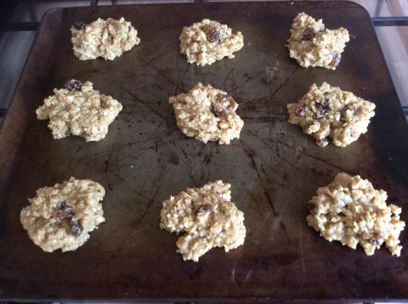 Oaty Cookies Uncooked